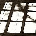 Window Shadow by Craig Brown