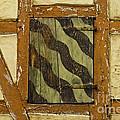 Window Shutter 2 by Heiko Koehrer-Wagner