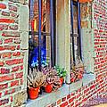 Window To Antwerp by Elvis Vaughn