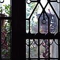 Window View 2 by Usha Shantharam
