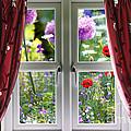 Window View Onto Wild Summer Garden by Simon Bratt Photography LRPS