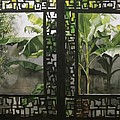 Window With Bamboo And Banana Plant by Alfred Ng