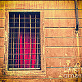 Window With Grate And Red Curtain by Silvia Ganora