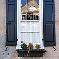 Window X by Bruce Bain