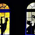 Windows by Bill Cannon