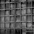 Windows Black And White 2 by Karen Adams