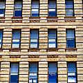 Windows Galore by Art Dingo