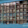 Windows In Blue Building 3 by Karen Adams