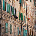Windows In Tuscany by Amy Bynum