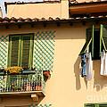 Windows, Italy by Holly C. Freeman