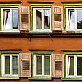 Windows by Marcia Colelli