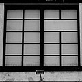 Windows Of Brooklyn In Black And White by Rob Hans