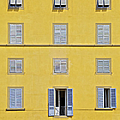 Windows Of Florence Against A Faded Yellow Plaster Wall by David Letts