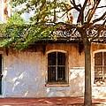 Windows Of Savannah by Bill Howard