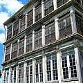 Lunatic Asylum Windows  by Peter Gumaer Ogden