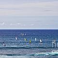 Windsurfing by Andrea Goodrich