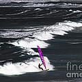 Windsurfing Man by Terri Waters