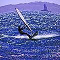 Windswept by Joe Geraci