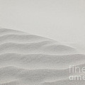 Windswept Sand Dune by Michelle Constantine
