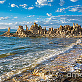 Windy Afternoon At Mono Lake by Mimi Ditchie