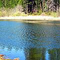 Windy Grace Lake by Joyce Dickens