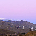 Windy Power At Sunset by Guido Montanes Castillo