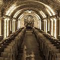 Wine Barrel Barrage by Preston Fiorletta