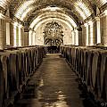 Wine Barrel Boulevard by Preston Fiorletta