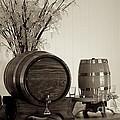 Wine Barrels by Alanna DPhoto