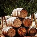 Wine Barrels by Image Takers Photography LLC - Laura Morgan