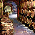 Wine Barrels In The Wine Cellar by Elaine Plesser