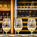 Wine Tasting  by Elena Elisseeva