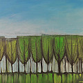 Wineglass Treeline by Tim Nyberg