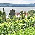 Winery On Lake Constance by Gordon Elwell