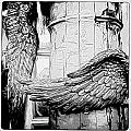 Wing It Bw by Jen  Brooks Art