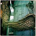 Wing It I by Jen  Brooks Art