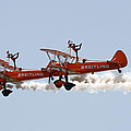 Wing Walkers  by Steve Ball