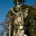 Winged Girl 13 by Douglas Barnett