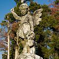 Winged Girl 8 by Douglas Barnett
