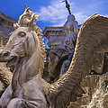 Winged Horse by Glenn DiPaola