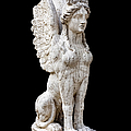 Winged Sphinx by Fabrizio Troiani