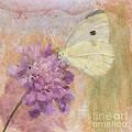 Wings Of Beauty by Betty LaRue