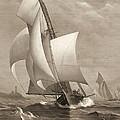 Winning Yacht 1885 by Padre Art