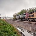 Winona Mn Train Scene Puddle by Kari Yearous