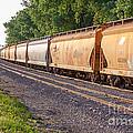 Winona Mn Train Scene With Bridge by Kari Yearous