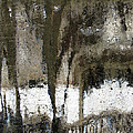 Winter Abstract by Jeane Shaw