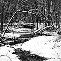 Winter At Pedelo Black And White by Deena Stoddard