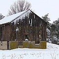 Winter At The Barn by Davandra Cribbie