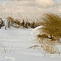 Winter At The Beach 3 by Heiko Koehrer-Wagner