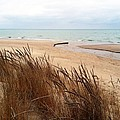 Winter Beach At Pier Cove by Michelle Calkins